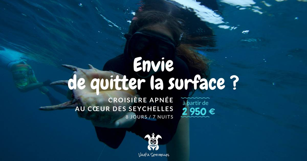 quitter-la-surface-tf